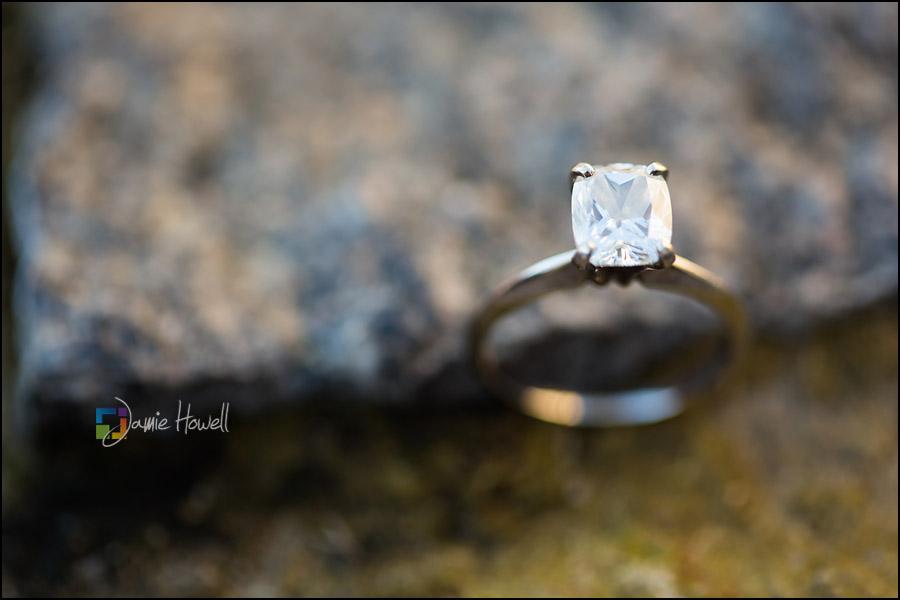 Engagement-26