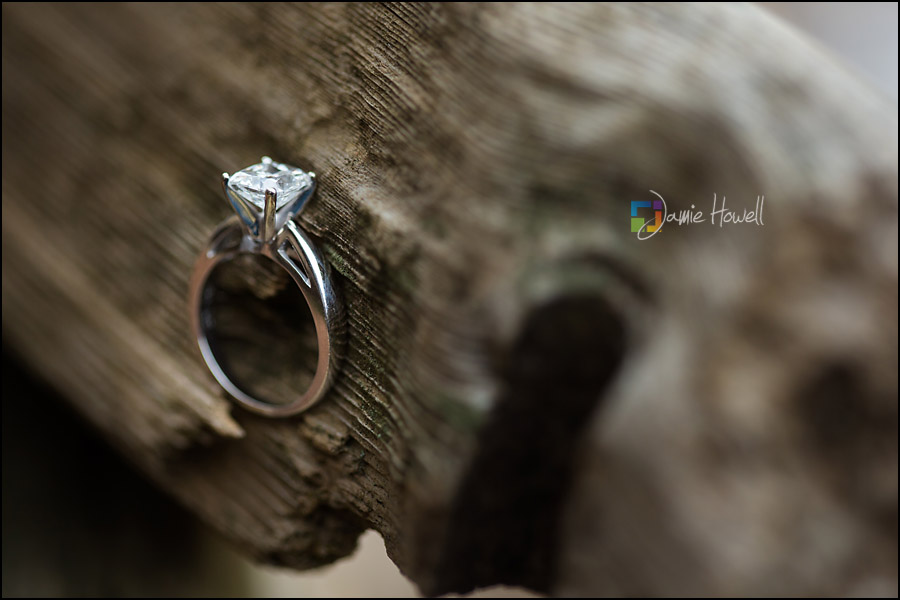 Kennesaw engagement session