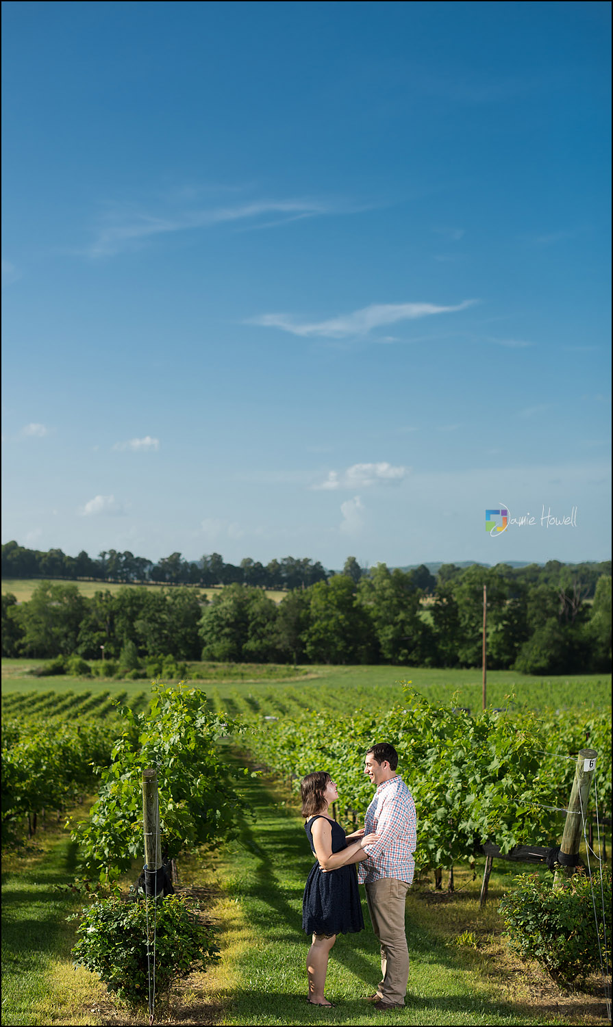 Arrington Vineyard engagement (5)