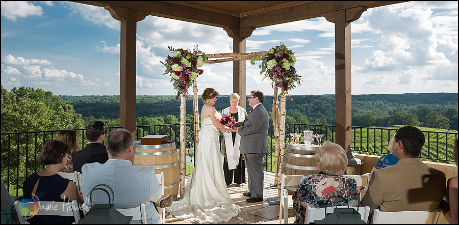 Montaluce Winery Wedding (30)
