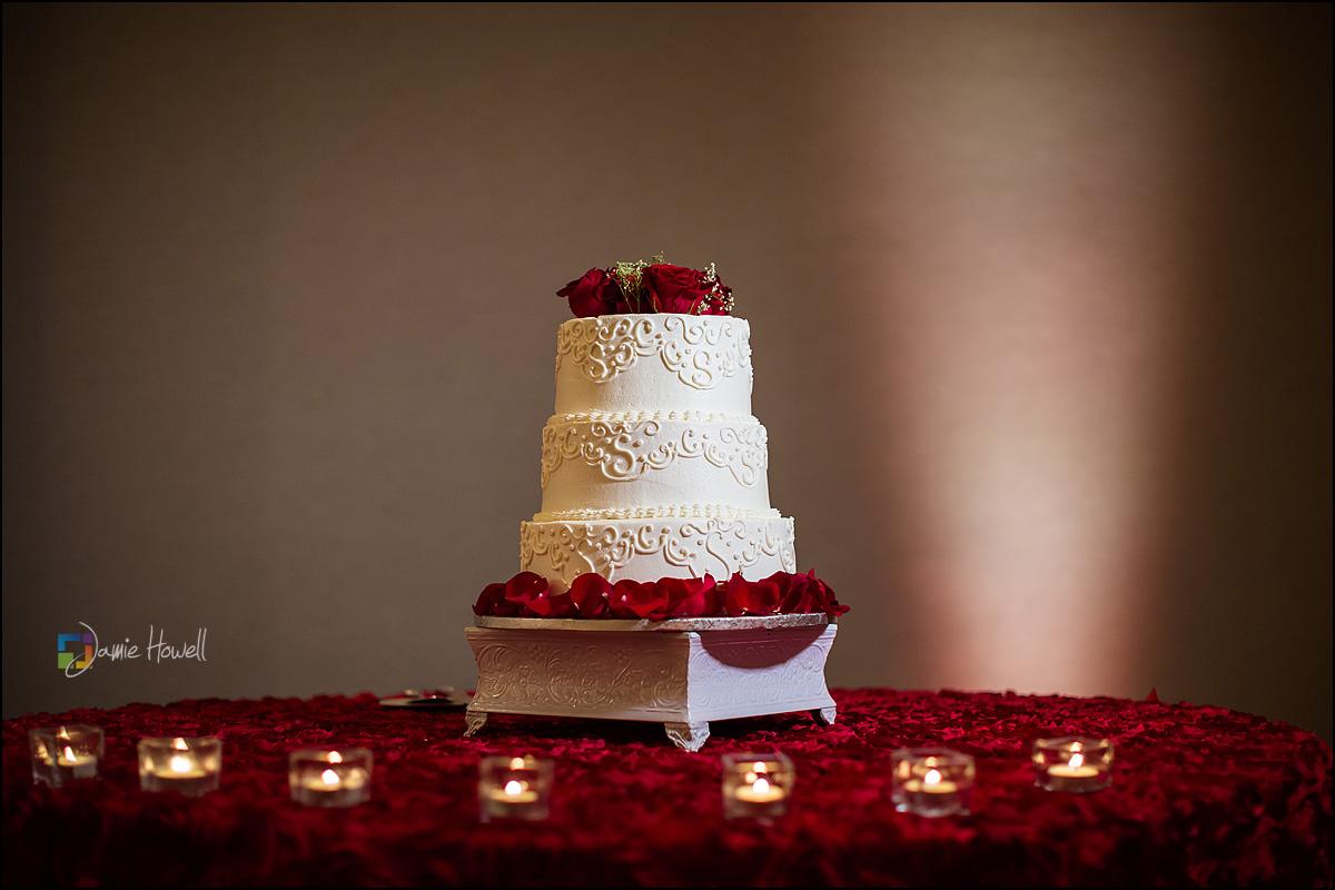 Westin Atlanta South Asian wedding (26)