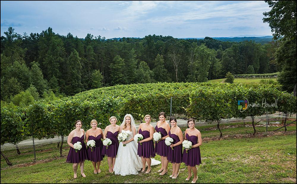 Wolf Mountain Vineyard wedding (7)