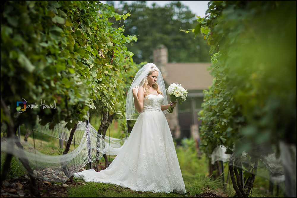 Wolf Mountain Vineyard wedding (9)