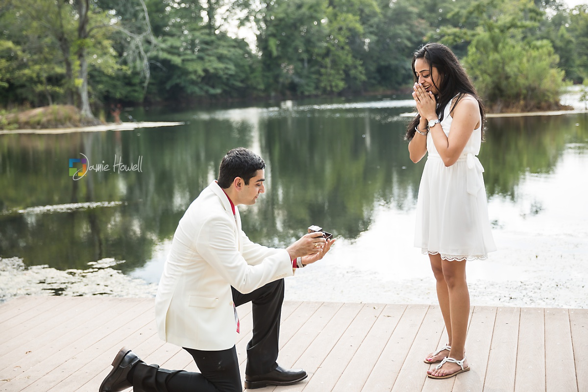 Nitesh_proposal-15