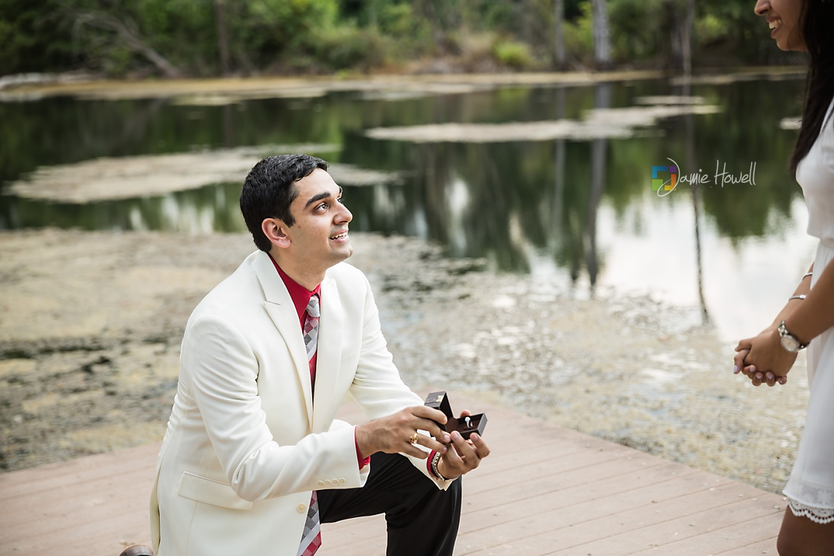 Nitesh_proposal-17