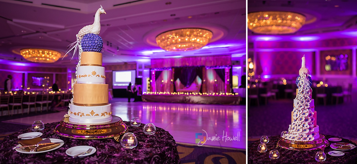Hilton Charlotte Center South Asian Wedding (49)